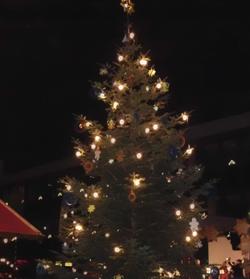 Ein Weihnachtsbaum für Bünde